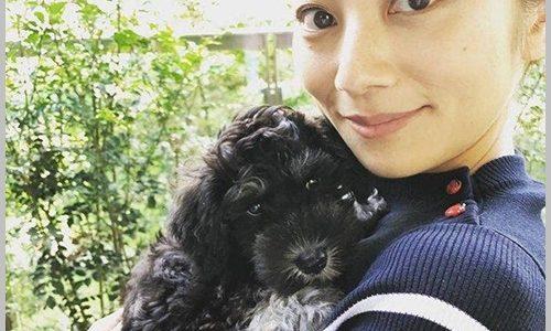 小池栄子の愛犬・ボニーが可愛い!犬種や性格は?出産してママに!